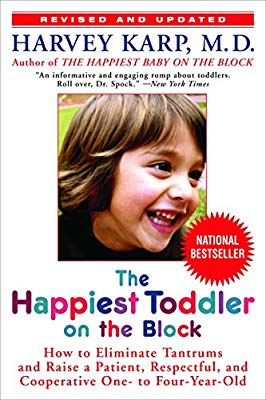 The Happiest Toddler on the Block Review